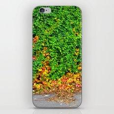 Autumm iPhone & iPod Skin