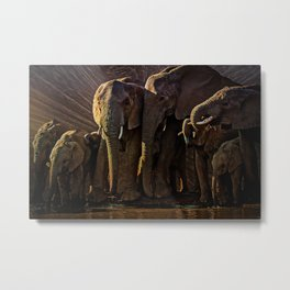 Elephant Watering Hole Metal Print