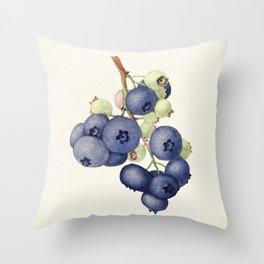 Blueberries (Vaccinium Corymbosum) (1940) by James Marion Shull Throw Pillow