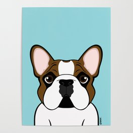 Frenchie - Fawn Pied Poster