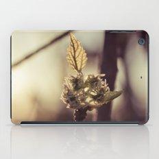 Raspberry sprout iPad Case
