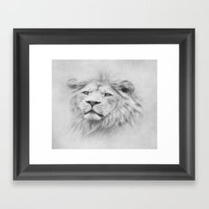 Barbary Lion  Framed Art Print