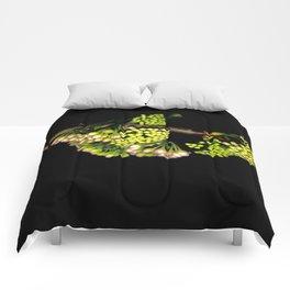Euodia Bloom Comforters