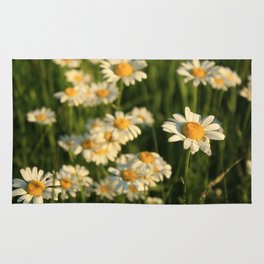 Field of Happiness Rug