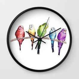 Rainbow Budgie birds Wall Clock
