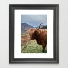 Highlander - II Framed Art Print