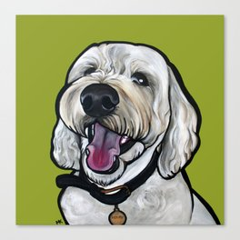Kermit the labradoodle Canvas Print