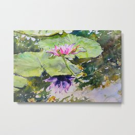 Flowering waterlily Metal Print