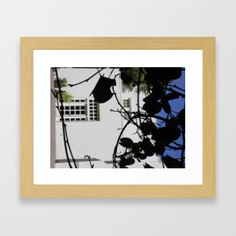 Secret Garden - 3  Framed Art Print