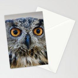 Handsome Eurasian Eagle Owl Stationery Cards