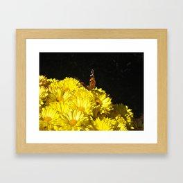 The Butterfly & the Flower... Framed Art Print