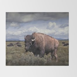 American Buffalo or Bison in the Grand Teton National Park Throw Blanket