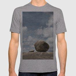 Rolling Stones ?? T-shirt