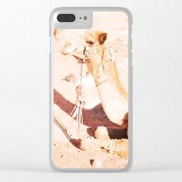 Mister Camel, Wadi Rum, Jordanie Clear iPhone Case