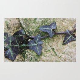 ivy (1) Rug