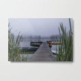 Through The Fog Metal Print