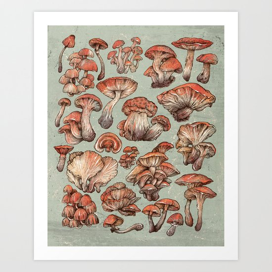A Series of Mushrooms Art Print