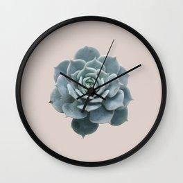Single Succulent Wall Clock