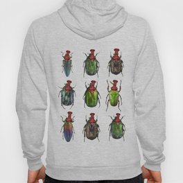Beetles on the wall Hoody