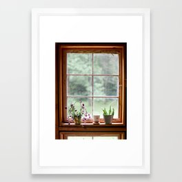 Out the Garden Window Framed Art Print