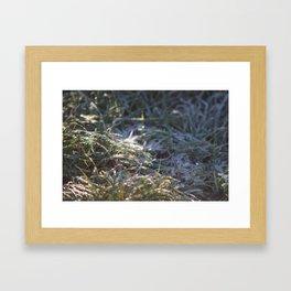 Frosty Underfoot Framed Art Print