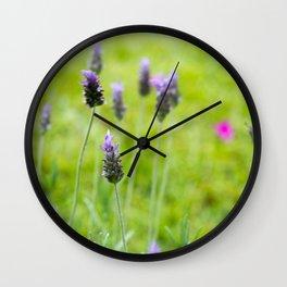 Lavender season Wall Clock