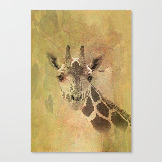 Lady Giraffe Canvas Print