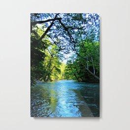 Water Trails Through Mt. Rainier National Park Metal Print