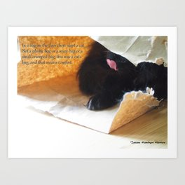 In a bag on the floor there lived a cat, or Black cat in bag Art Print