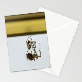 Spider Trap Stationery Cards