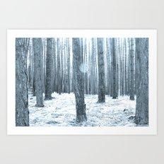 More Trees. Art Print