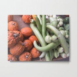 Fall gourds Metal Print