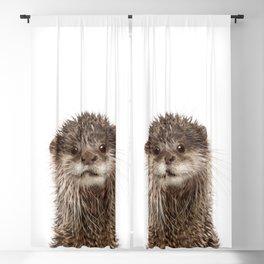 Baby Otter Portrait Blackout Curtain