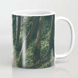 To The Falls Coffee Mug