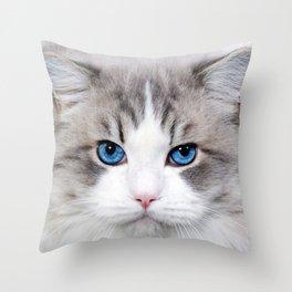 Cute Cat Throw Pillow