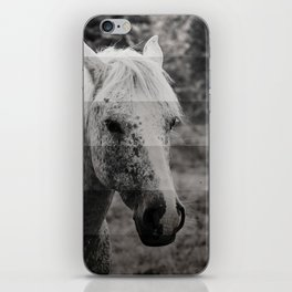 GreyScale Horse iPhone Skin