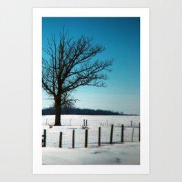 tree #3 Art Print