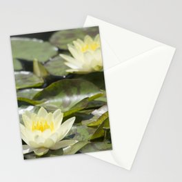 Longwood Gardens - Spring Series 303 Stationery Cards