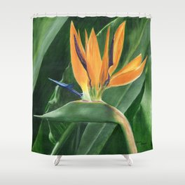 Simply Elegant by Teresa Thompson Shower Curtain