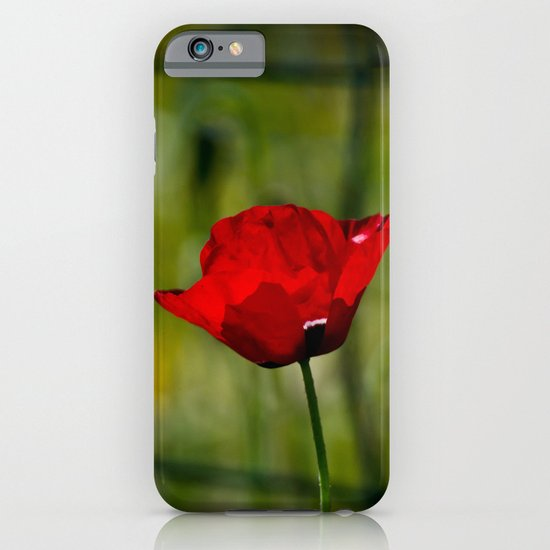 Poppy and Fence iPhone & iPod Case