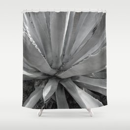 Agave Cactus, warm day, Shower Curtain