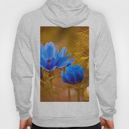A Brighter Blue Hoody