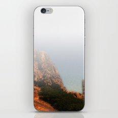 Craco iPhone & iPod Skin