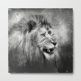 Grunge Snarling Lion Metal Print