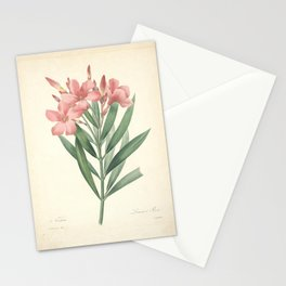 nerium Redoute Roses 4 Stationery Cards