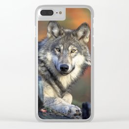Wild Wolf Photo Clear iPhone Case