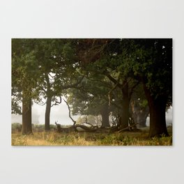 I'm counting to ten Canvas Print