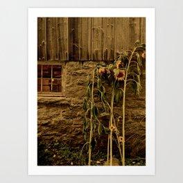 Farm Treasures Art Print