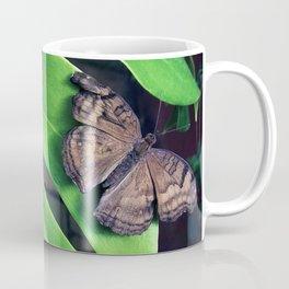 Damaged Coffee Mug