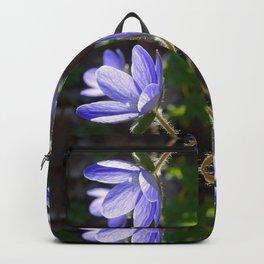 Blue beauty Backpack